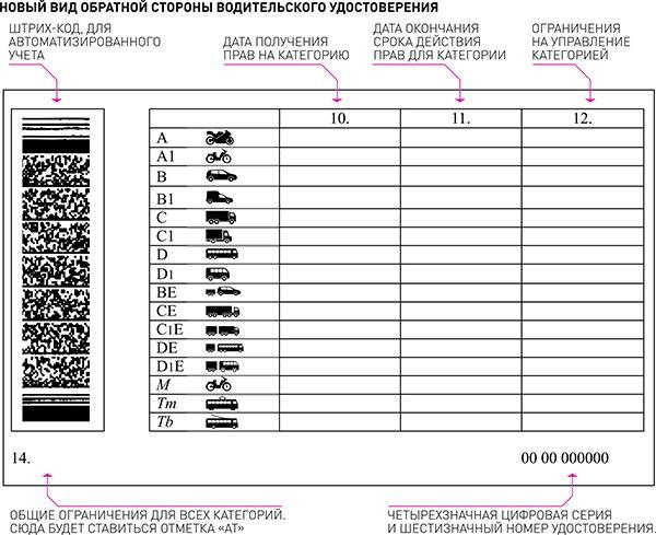 Закон о водительских правах в России